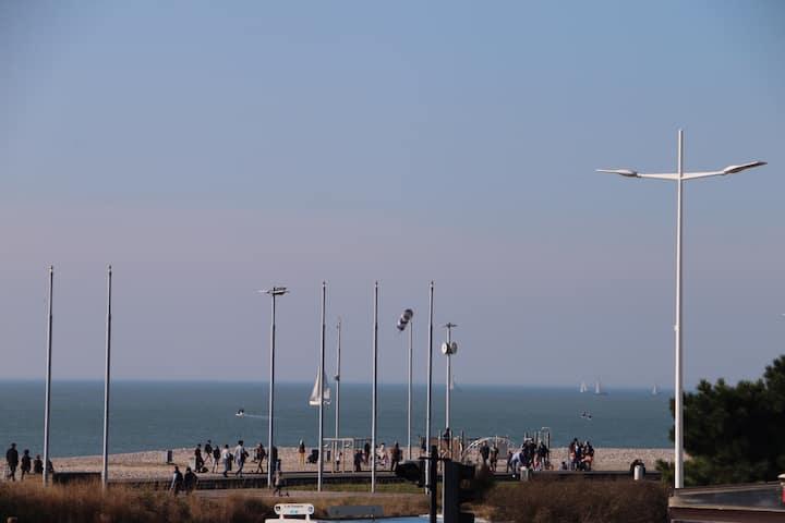 F2, pleine vue mer,  à deux pas de la plage.
