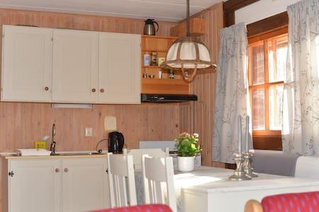 Geilo, Hallingdal  m/kjøkken og bad - Geilo
