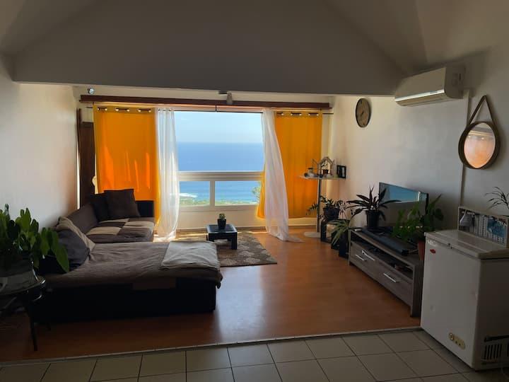 Appartement lumineux avec vue sur l'océan