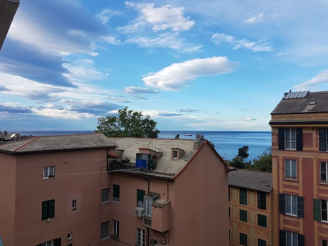 Top floor flat with sea and park views (CITRA1307)