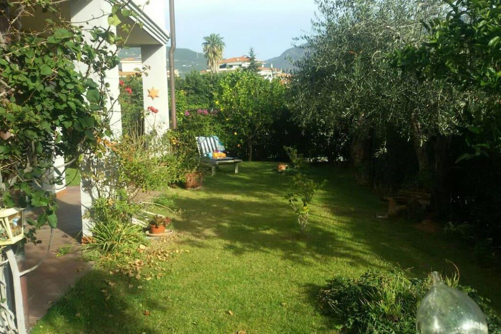 panoramica sul giardino