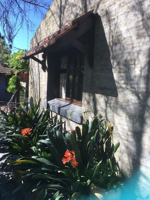 ventana cocina y entrada lateral