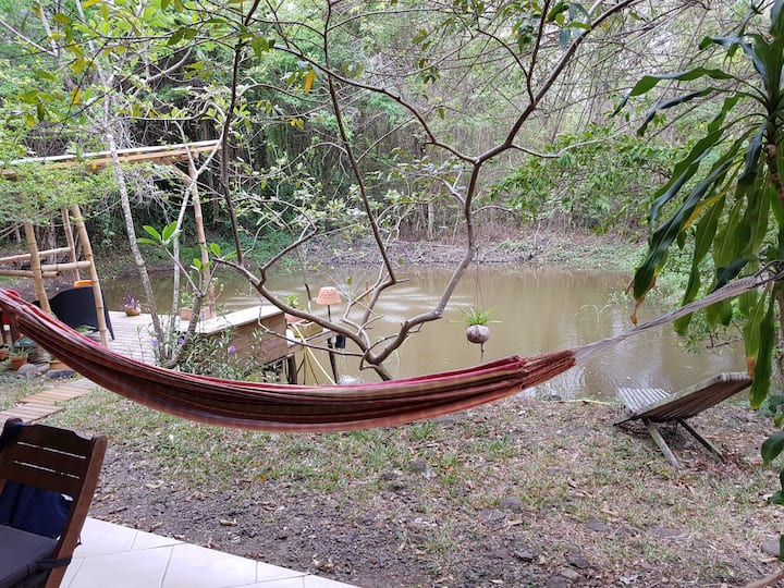 Logement atypique ouvert sur la nature