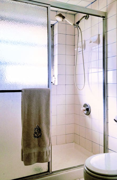 Master suite, bathroom with shower!