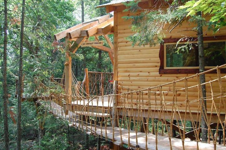 Chalet dans les arbres - Nominingue - Treehouse