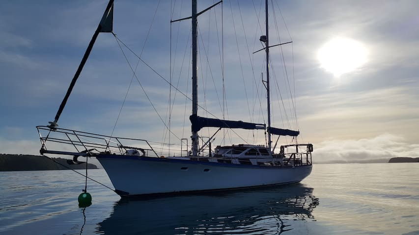 Waterfront double room on yacht on Prince of Tides - Nelson - Boat
