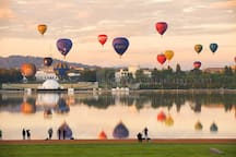 Gorgeous Hot Air Balloons over Canberra
