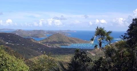セントジョンズの穏やかなカリブ海の景色