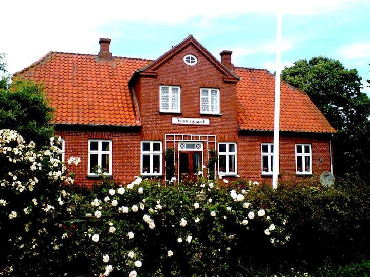 Villa med masser af plads på Skarø - midt i Øhavet