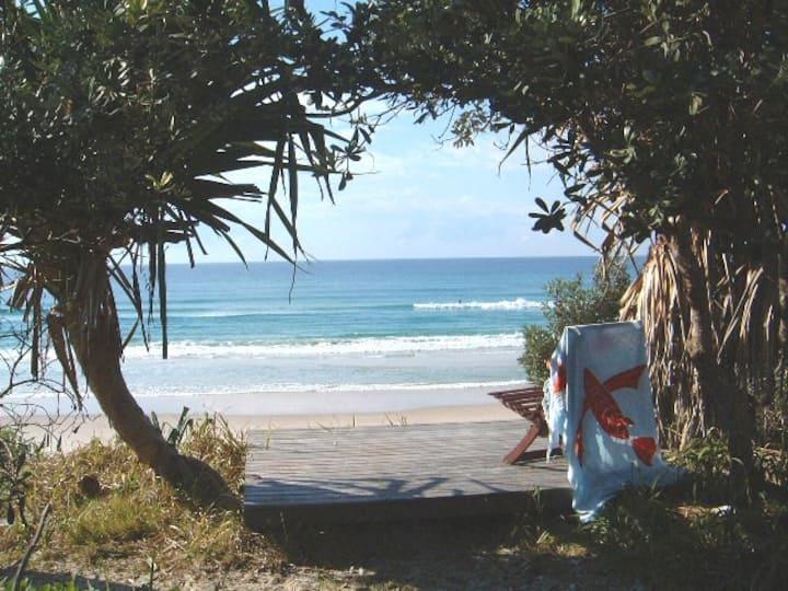Banksias at the Beach, Byron Bay