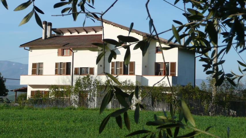 Le Galelle - Province of Pescara - Apartment