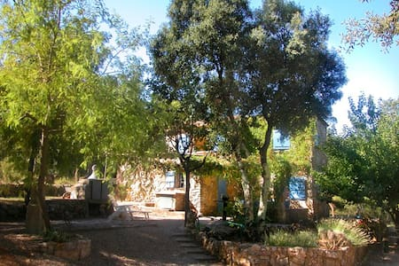 Cabanon in green hills of Provence