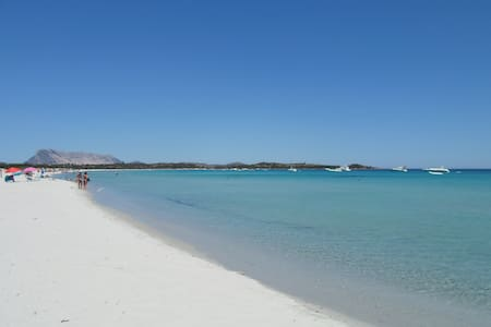 Puntaldia The paradise in Sardinia - 圣特奥多罗 - 公寓