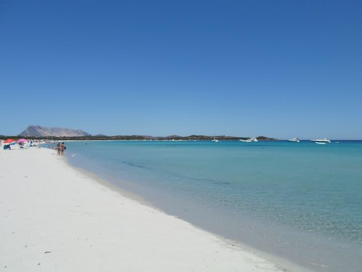 Puntaldia The paradise in Sardinia