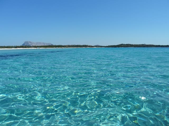 Puntaldia • Paradise in Sardinia - case in affitto a San ...