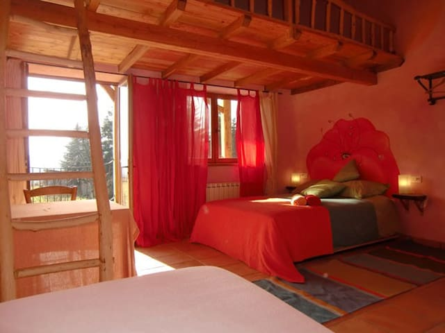 Ecological B&B facing Pyrenees