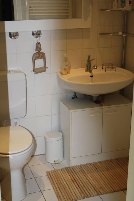 Bad mit Dusche, muss eventuell mit anderen Gästen geteilt werden