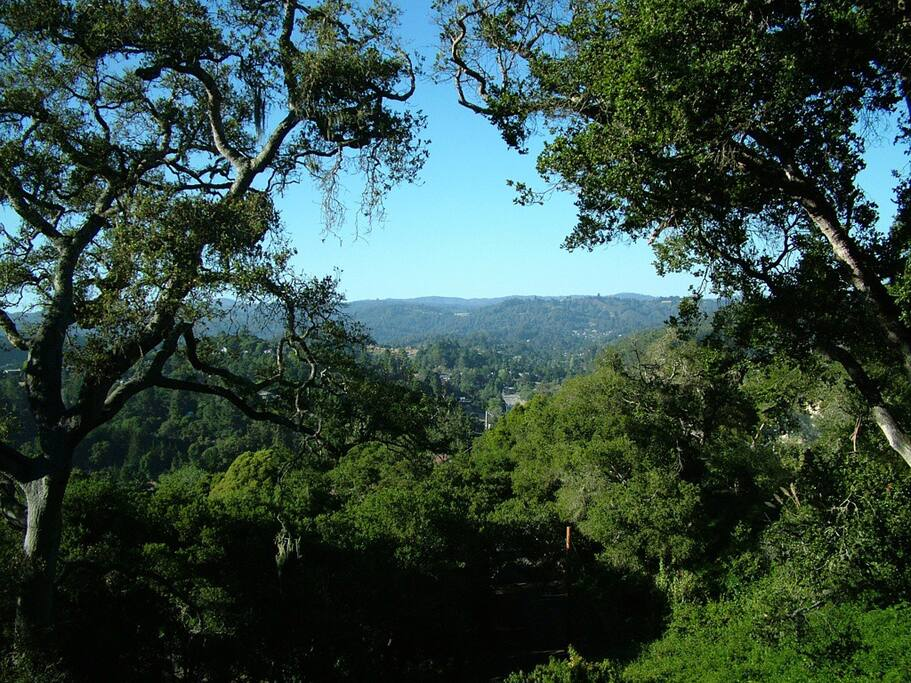 Hillside House - Spectacular View