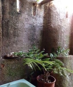 Urban Perma-culture Garden Cottage - Berea - Other