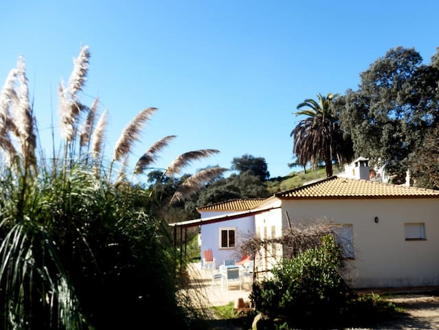 Country Cottage with private pool - Málaga - Rumah