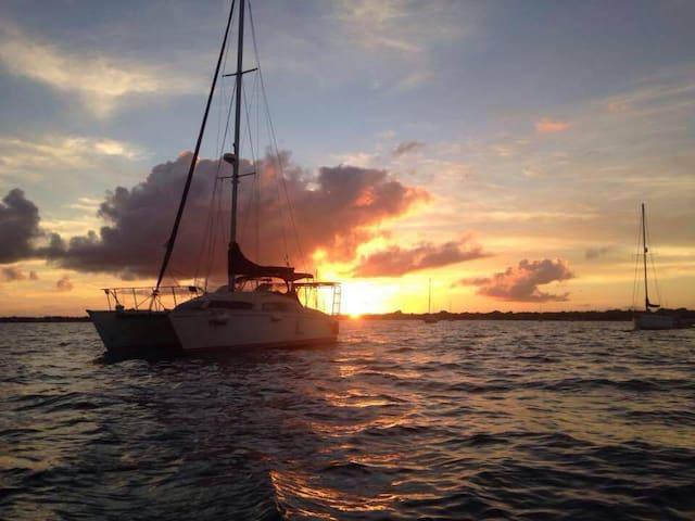 Beyond Infinity Cruises - Isla Mujeres - Barca