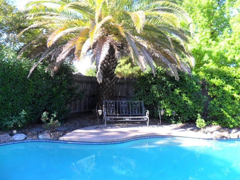Great swimming pool!