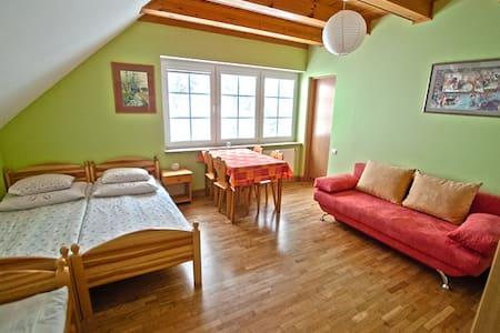 Pokój Zielony MALINÓWKA - Szczyrk - House