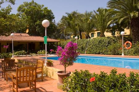Holiday Cottage in Firgas (GC0020) - El Zumacal