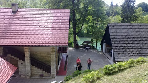 Beautiful Nature 25 meters from the river Sava