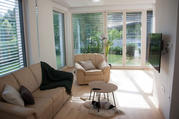 Bright and spacious living room. Dog not included :)
