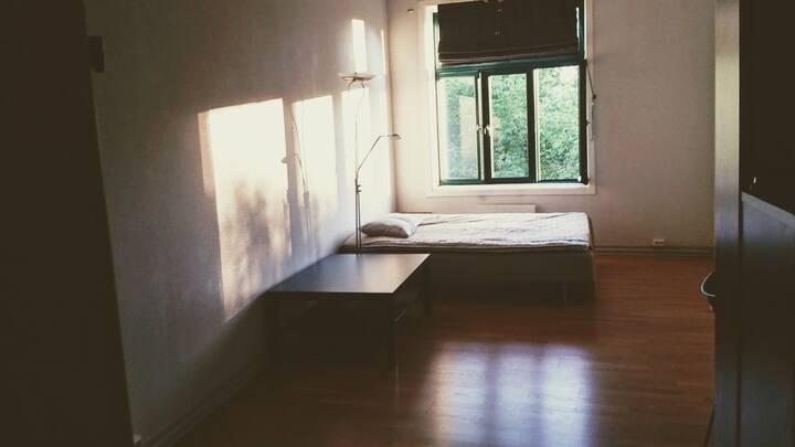 Sun-full room for rent