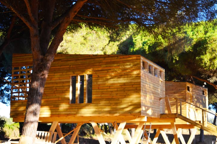 Casa Calendula - Baumhaus zwischen Baumkronen