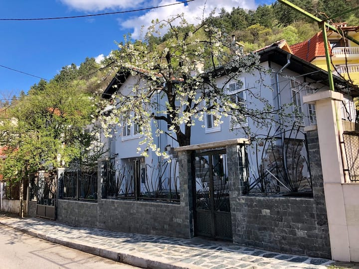 unique 6 bedroom house in city center