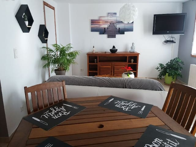 appartement  avec terrasse et jardin.