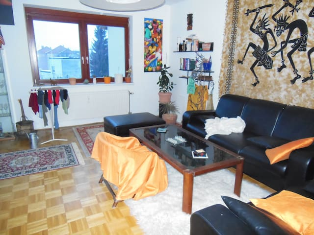 SPACIOUS ROOM in Graz / Liebenau - Graz - Appartement