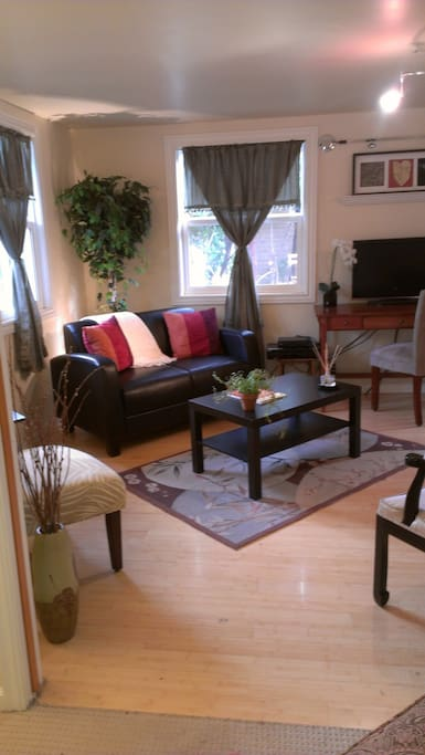 Living room has pull out couch good for 1 adult