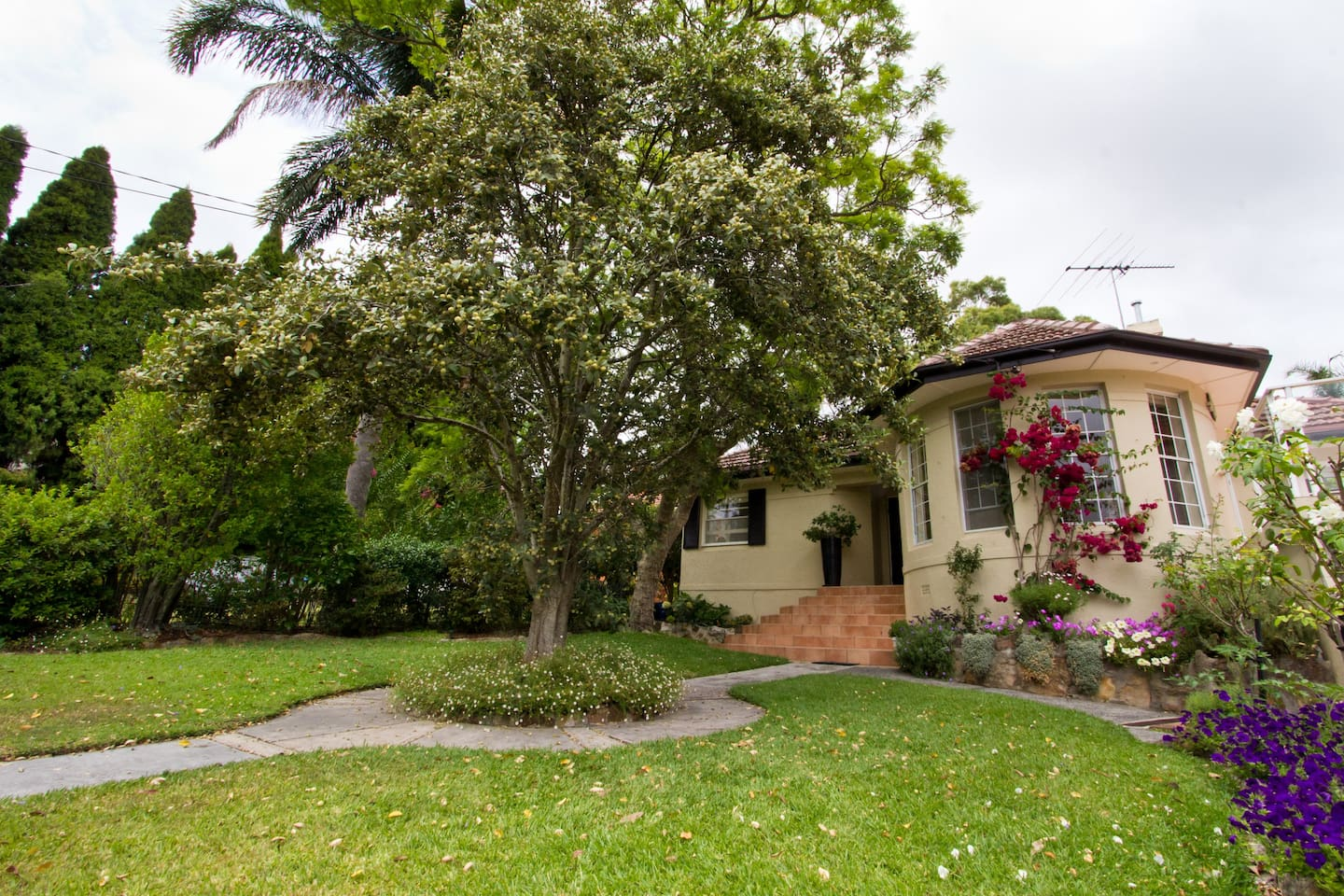 Quiet, self-contained accommodation. One bedroom bathroom ; kitchenette. Separate entrance. Street parking. Centrally located between the northern beaches & the city.