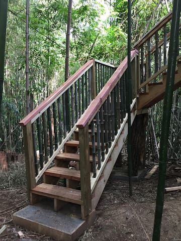 Live edge cedar stairs and cedar hand rails supported by black locust logs lead up into the treehouse.