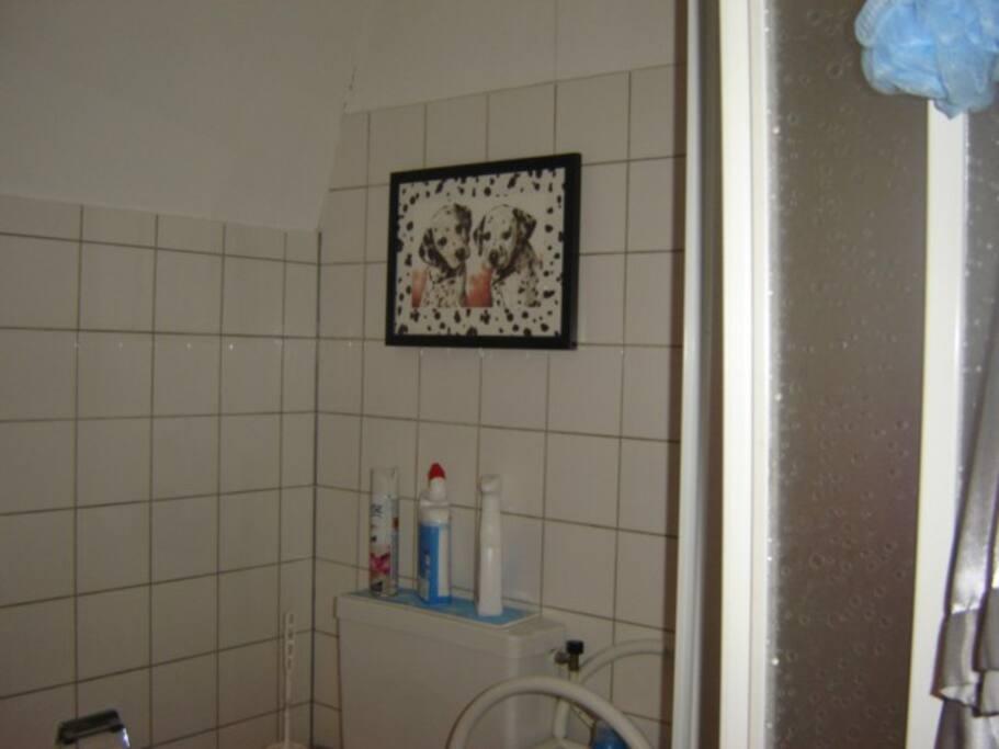 Bathroom/Toilet upstairs