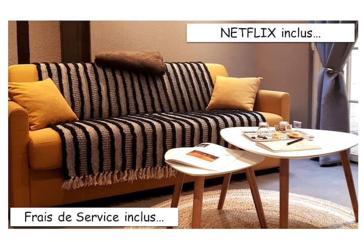 Duplex Cathédrale Classé 2 ⭐⭐ /WIFI / Netflix