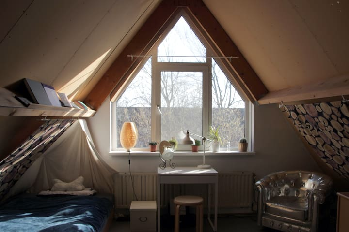 Private room in Breda - Breda