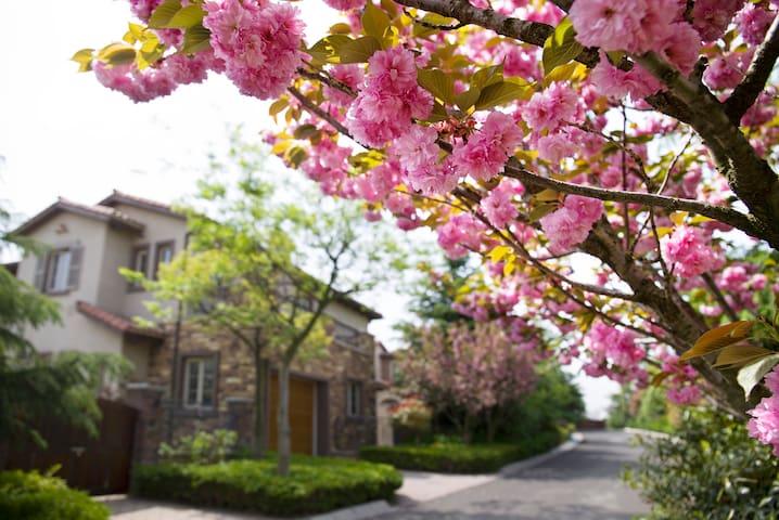 小白温泉度假轰趴别墅 - Qingdao Shi - Vila