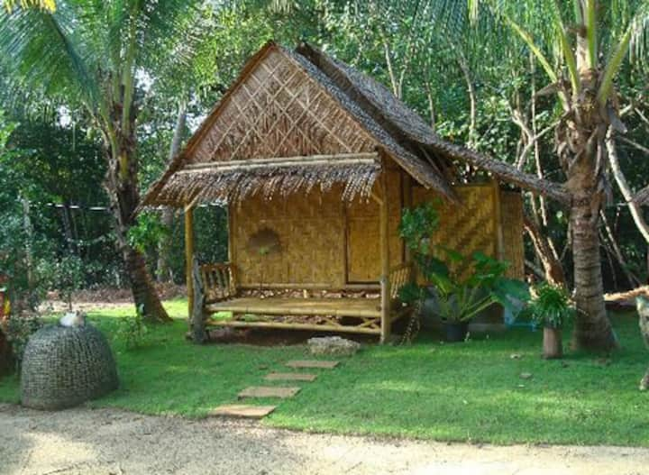 The Bananas Bungalow off the Beaten Track Hostel 3