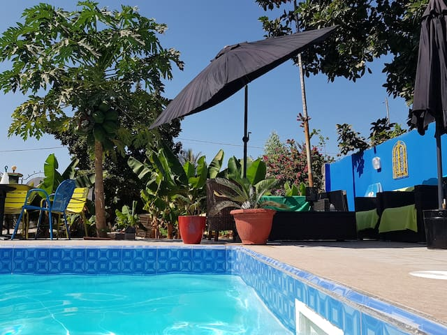 Camara Gardens Apartments with Pool 4/4 Gambia