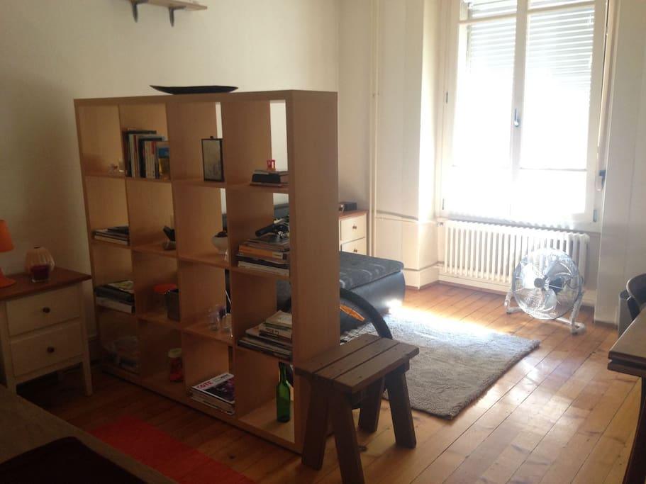 Chambre au centre ville et c t du rh ne appartements for Chambre a louer suisse