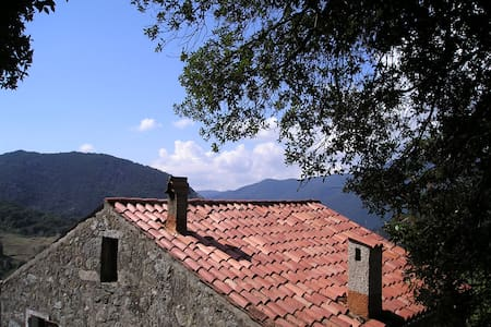 Traditional-style moutain house - Zicavo