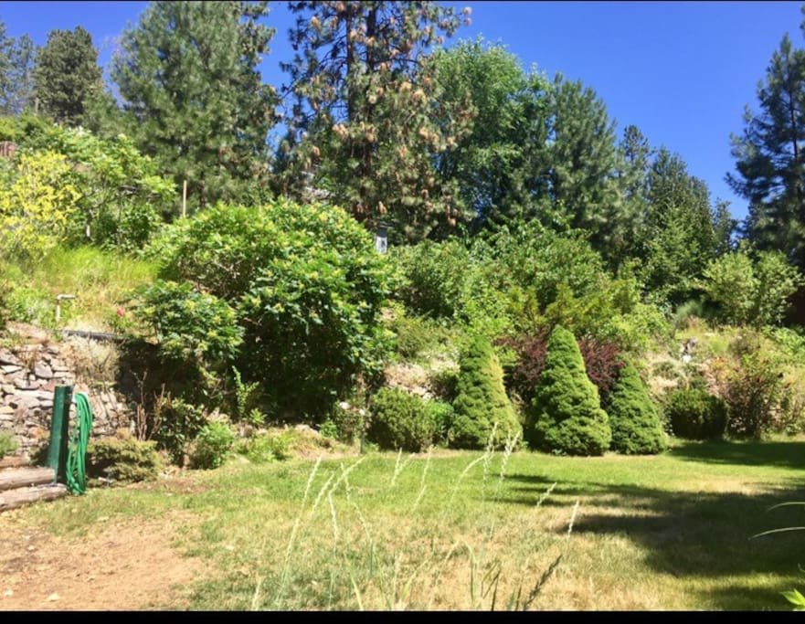 View of our beautiful 3 tiered garden from the driveway. Walk among the flowers or pick some fruit during your stay.
