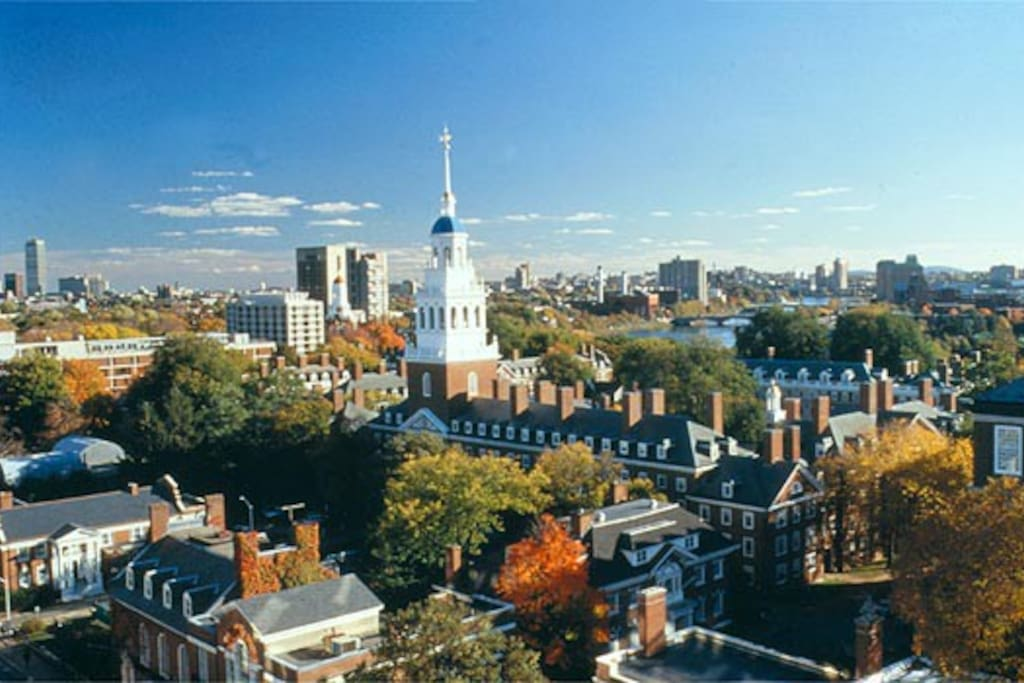 Near Harvard, Brandeis, Bentley and Corporate Campuses