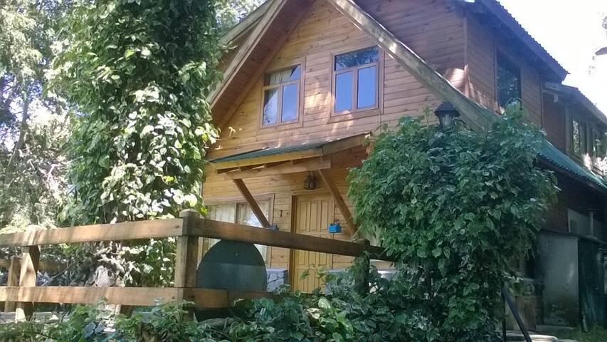 Cabaña en el bosque - Los Lagos - Cabin