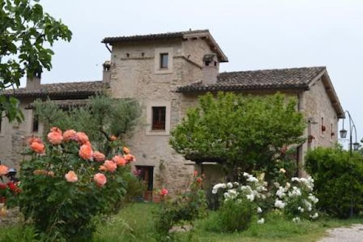 Appartments in the country - Castel Ritaldi - Apartment